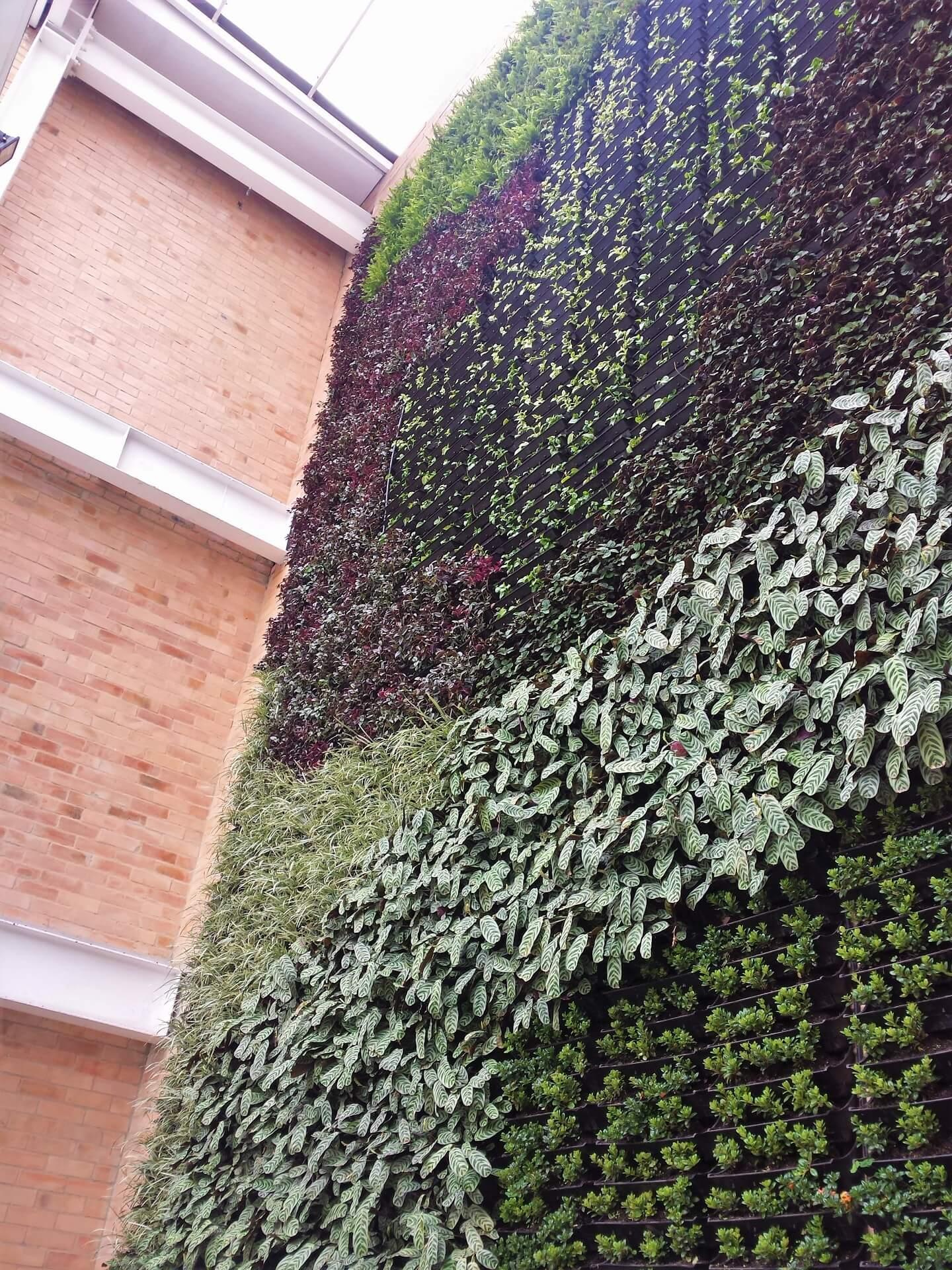 Muros Verdes Zona Franca Bogotá