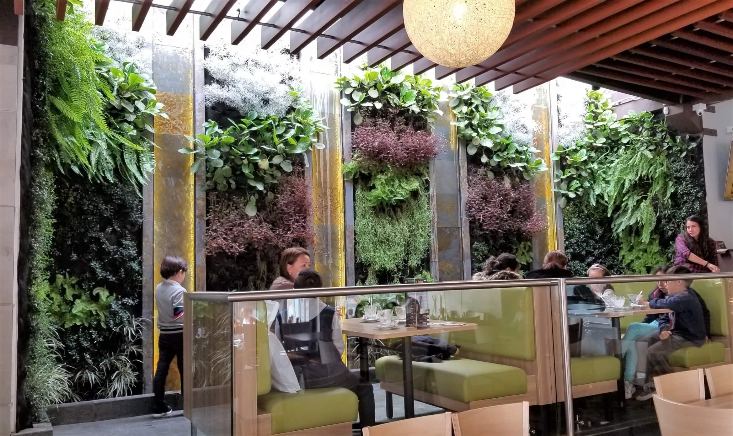 Muro Verde Terraza Café Duitama